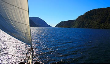 Things to do Milford Sound - Sailing