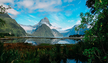 Milford Sound day walks Foreshore track
