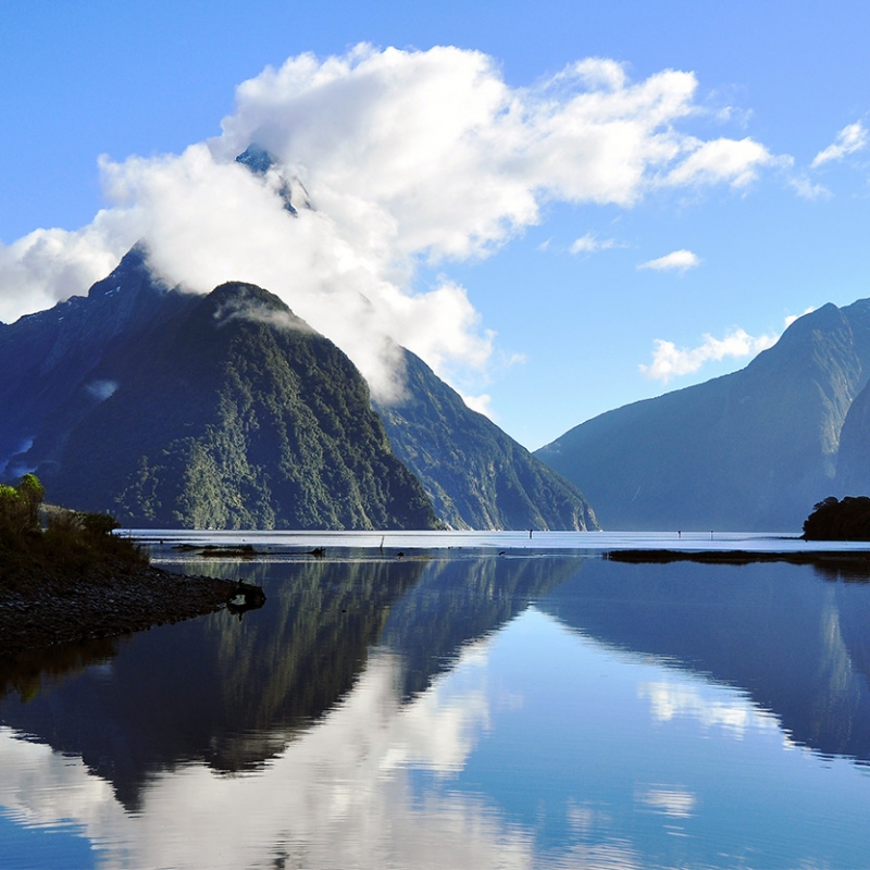 Milford Sound reflection