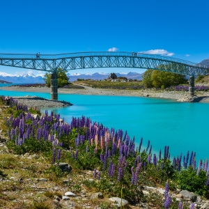 Milford Sound Travel Itinerary - Lake Tekapo
