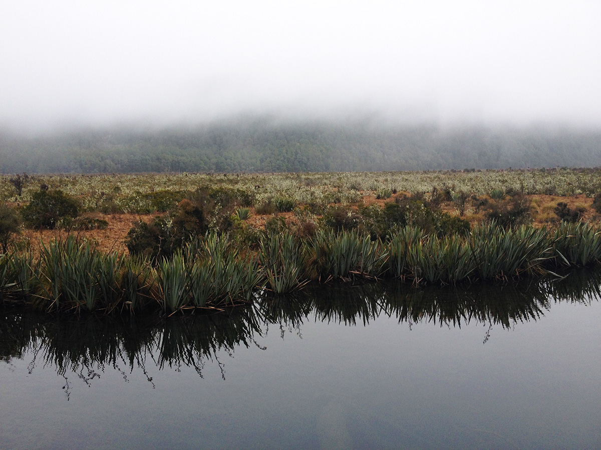 Cloudy day at Mirror Lakes, Eglinton Valley, on the way to Milford Sound