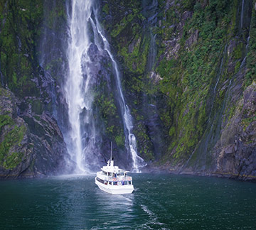 Milford Sound Gray Line cruise