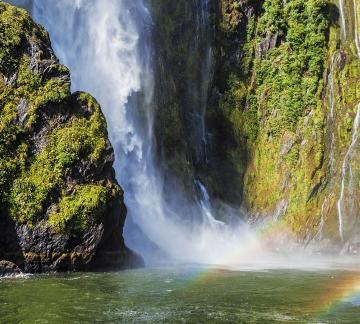 Milford Sound eco tours